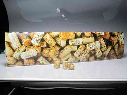 Illustrated Plate magnets corks (corks) to hang notes (EMPLOYEE)